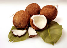 Cocunut Stock Photography