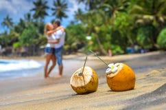 Cocunut på en tropisk strand Royaltyfri Foto