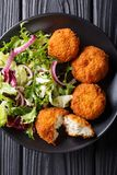 Cod cake in breading with fresh mix salad close-up on a plate on. Cod cake in breading with fresh mix salad close-up on a plate. Vertical top view from above Stock Photography