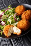 Cod cake in breading with fresh mix salad close-up on a plate on. Cod cake in breading with fresh mix salad close-up on a plate. vertical Stock Image
