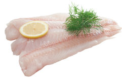 Cod Fillet Stock Photography