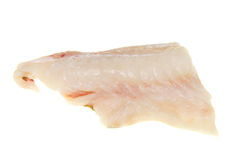 Cod fillet. Fresh raw cod fillet isolated on white stock photos