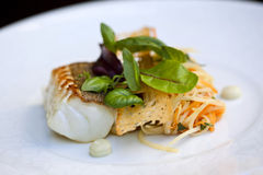 Cod fillet Stock Photo