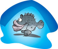Cod Fish royalty free stock images
