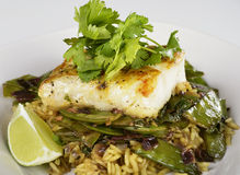 Cod Fish Fillets Royalty Free Stock Photo