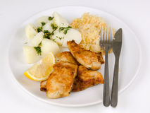 Cod fish lunch set with cutlery Royalty Free Stock Image