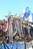 Cod's  racks of Hamnoey Stock Photography