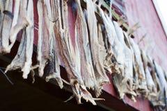 Cod stockfish Royalty Free Stock Photography