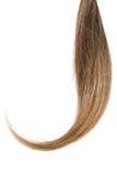 Coda dei capelli Fotografia Stock