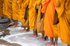 Coda dei monaci scalzi con il ceremonial del lavaggio del piede nel sud del Vietnam immagine stock libera da diritti