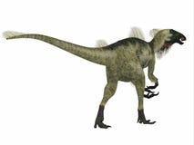 Coda del dinosauro del Beipiaosaurus Illustrazione Vettoriale