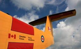Coda della Buffalo CC-115 Immagini Stock Libere da Diritti