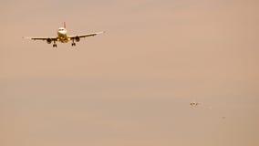 Coda per atterrare. Immagine Stock