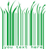 Code barres vert avec le texte Photo libre de droits