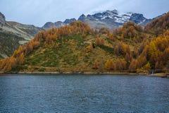 Codelago. Lake codelago in alpe devero during autumn Royalty Free Stock Image