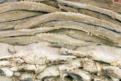 Codfish. Pile of dried and salted codfish fillets Royalty Free Stock Photos