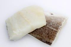 codfish Obrazy Stock