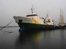 Codfish boat at port Stock Image