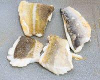 Codfish- och för havsbraxen makro arkivfoto
