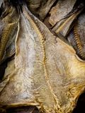 Codfish som är okokta på en marknadsplats i Orvieto Umbria, Royaltyfri Fotografi
