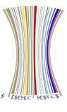Codice a barre colorato Fotografie Stock Libere da Diritti