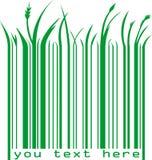 Codice a barre verde con testo Fotografia Stock Libera da Diritti