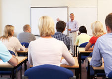 Codice categoria d'istruzione dell'insegnante privato maggiore Fotografia Stock