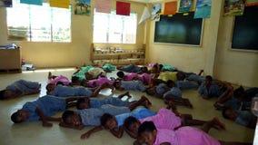 Codice categoria di banco del Fijian che dorme sulla terra Fotografie Stock