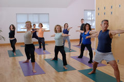 Codice categoria di yoga Immagini Stock Libere da Diritti