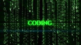 codificación metrajes
