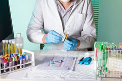 Coding sample tubes for study. Laboratory technician holding and labeling sample tubes urine and blood for coding traceability royalty free stock photo