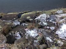 Codling πέτρα Στοκ εικόνα με δικαίωμα ελεύθερης χρήσης