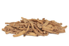 Codonopsis Root Stock Images