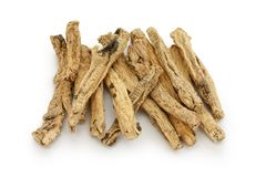 Codonopsis roots, traditional chinese herbal medic stock photos