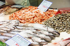 Cods and prawns on sale in Granada Royalty Free Stock Images