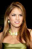 Cody Horn Royalty Free Stock Images
