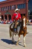 Cody Wyoming, USA - cowboyen med ljus röd skjortaridning på självständighetsdagen ståtar Royaltyfri Fotografi