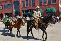 Cody Wyoming, USA - Juli 4th, 2009 - medlemmen av USA Forest Service monterade på hans häst som leder flera packhästar i Indepen Arkivbilder