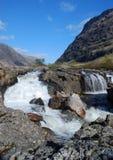 Coe de fleuve Photos libres de droits