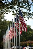 Coe Lake - Berea - Cleveland - Ohio - American Flags. This is a very small lake situated behind Berea`s City Hall and the Cuyahoga County Library. Once a stock photo