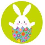 Coelhinho da Páscoa bonito no ovo de choque com teste padrão floral fotografia de stock royalty free