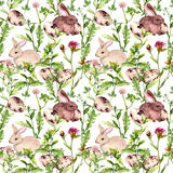Coelhinho da Páscoa com os ovos na grama e nas flores Teste padrão floral sem emenda de easter watercolor Fotografia de Stock