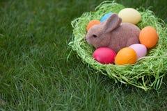 Coelhinho da Páscoa com ovos da páscoa em um ninho fotografia de stock royalty free