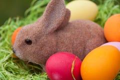 Coelhinho da Páscoa com ovos da páscoa em um ninho fotografia de stock
