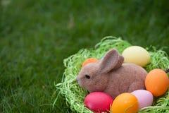 Coelhinho da Páscoa com ovos da páscoa em um ninho foto de stock royalty free