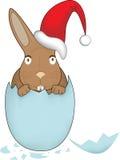 Coelhinho da Páscoa 3 do Natal Fotos de Stock