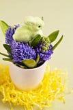 Coelhinho da Páscoa e jacintos Fotografia de Stock Royalty Free