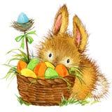 Coelhinho da Páscoa e ovo da páscoa com decoração do jardim Fundo para felicitações watercolor ilustração stock
