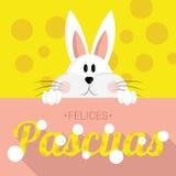 Coelhinho da Páscoa - easter feliz - espanhol Foto de Stock