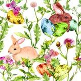 Coelhinho da Páscoa, ovos coloridos na grama e flores com borboletas Teste padrão floral sem emenda de easter com caça do ovo Fotografia de Stock Royalty Free